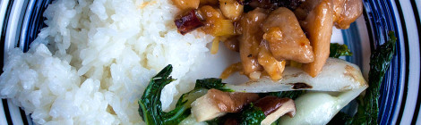 Gong Bao Chicken with Peanuts and Bok Choy with Shiitake